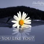 Do You Like You?