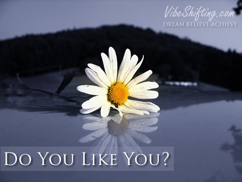 Do You Like You?
