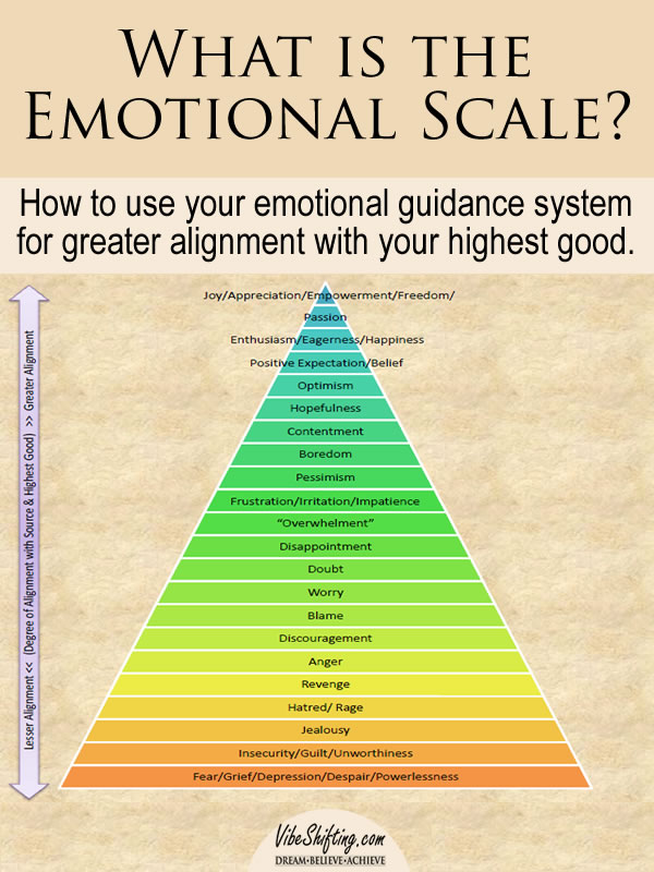 What is the Emotional Scale - pin