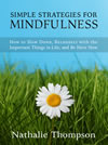 Buy Simple Strategies for Mindfulness