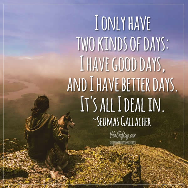 Image quote - I only have two kinds of days